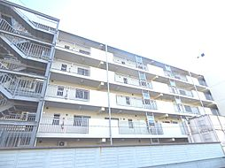 パームハイツI[4階]の外観
