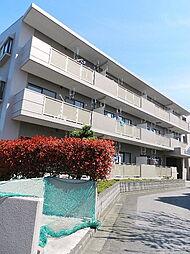 埼玉県さいたま市北区今羽町の賃貸マンションの外観