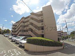 日興池田五月丘スカイマンション2号棟[3階]の外観