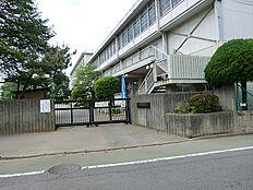 武蔵野小学校 徒歩13分