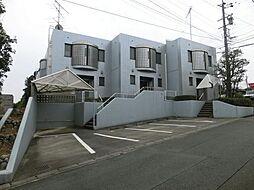 [テラスハウス] 静岡県浜松市中区上島1丁目 の賃貸【/】の外観