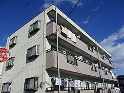 アムールオオカサ[3階]の外観