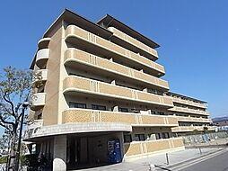 フレアコートコスモ[4階]の外観