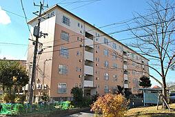 UR男山団地[4階]の外観