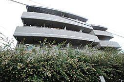 メゾン・ド・コンコルド[1階]の外観