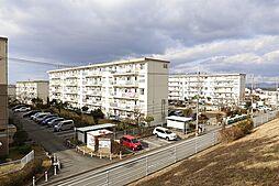 五社駅 3.4万円