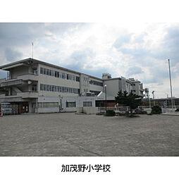小学校加茂野小学校まで611m