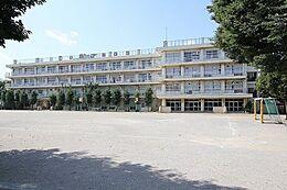 小学校西東京市立栄小学校まで222m