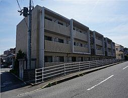 Radier MARU.T[1階]の外観
