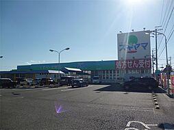 ドラッグスギヤマ 形原店(853m)