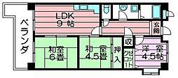 メゾン・アコアラム 吉田7 東花園7分[1階]の間取り