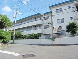 大阪府三島郡島本町広瀬3丁目の賃貸マンションの外観