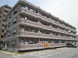 愛知県安城市横山町大山田中の賃貸マンションの外観