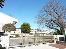 小学校水戸市立石川小学校まで770m