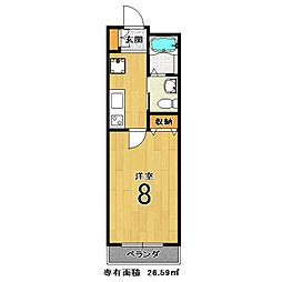 コットンハウスIII[105号室]の間取り