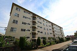 神陵台東住宅44号棟[5階]の外観