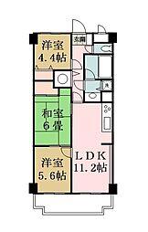 ライオンズマンション竹ノ塚第3[3階]の間取り