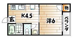 グレイスコート井堀[3階]の間取り