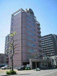 ビッグバーンズマンションN11[9階]の外観