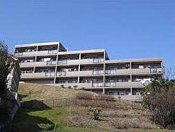 サンフィール壱番舘[2階]の外観