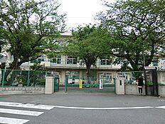 町田市立町田第五小学校 距離約650m