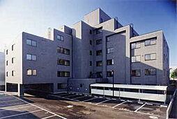 グランメゾン東札幌[202号室]の外観