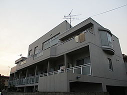 アビターレ綱島[106号室]の外観