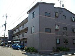 大阪府泉大津市池浦町5丁目の賃貸マンションの外観