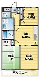 グランシャトレーDAIWA[4階]の間取り