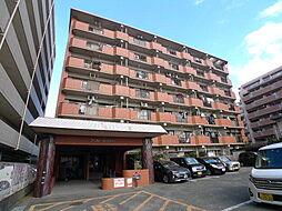 新栄アンピール筑紫通り[7階]の外観