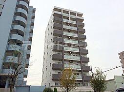 THEパームス東武練馬[8階]の外観