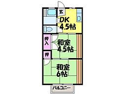 愛媛県松山市畑寺4丁目の賃貸アパートの間取り