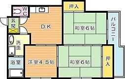アベニュー筒井[2階]の間取り