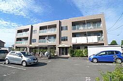 フィネス高須[2階]の外観