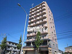 Avenue 23[7階]の外観