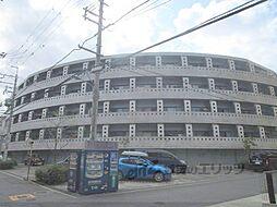 JR東海道・山陽本線 千里丘駅 徒歩7分の賃貸マンション
