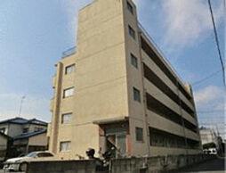 埼玉県越谷市赤山町4丁目の賃貸マンションの外観