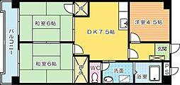シャトレ湯川[203号室]の間取り