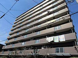 ブランシェ杭全[5階]の外観