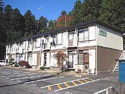 シティハイム・YASAKA[106号室]の外観