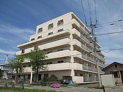 メゾンド村井[502号室]の外観
