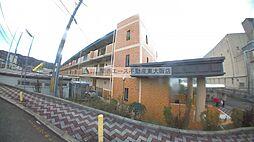 STマンション[2階]の外観