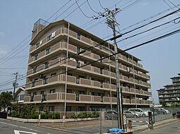 ドミール川崎[605号室]の外観