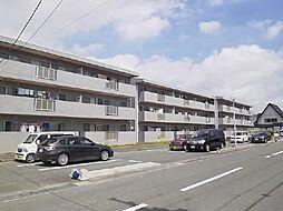 上岡田ガーデンハイツA・B[A-302号室]の外観