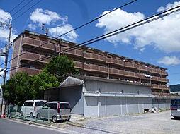 ヴェルドミール山本[203号室]の外観