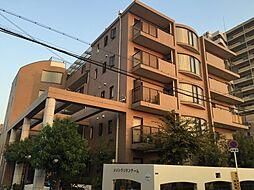 メゾンクリサンテーム Cタイプ[1階]の外観