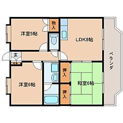 静岡県静岡市駿河区中田本町の賃貸マンションの間取り