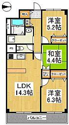 福岡県久留米市梅満町の賃貸マンションの間取り