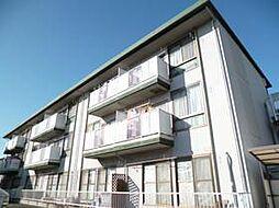 埼玉県さいたま市中央区桜丘2丁目の賃貸マンションの外観