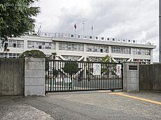 昭島市立拝島第一小学校 距離1150m